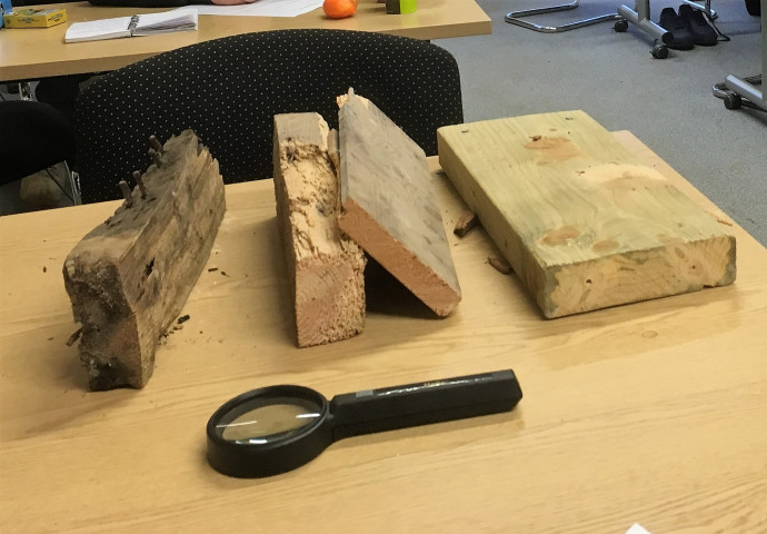 Timber affected by wood boring insect and fungal decay.