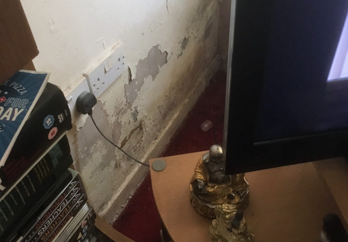Damp at base of wall
