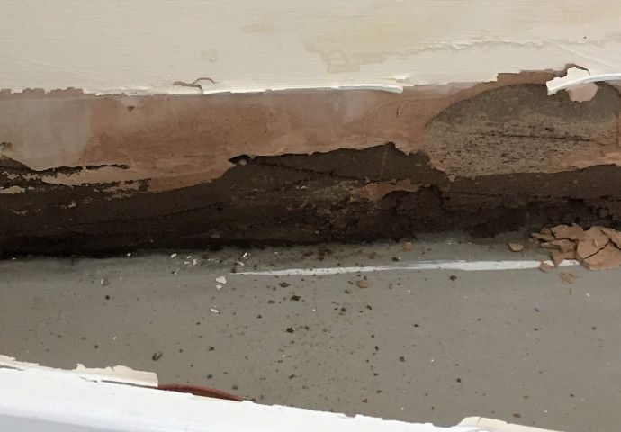 Wall plaster bridging the dpc.